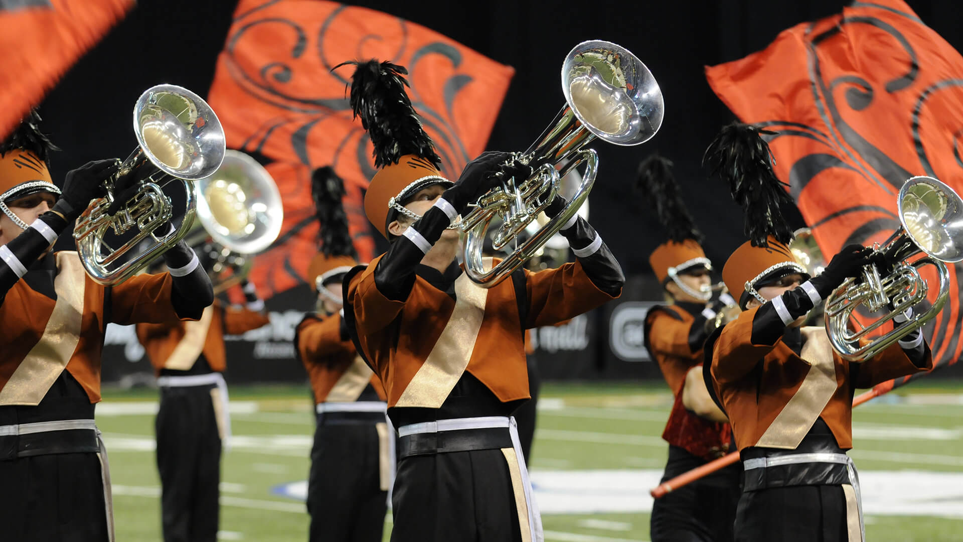 Spotlight of the Week: 2009 Mandarins