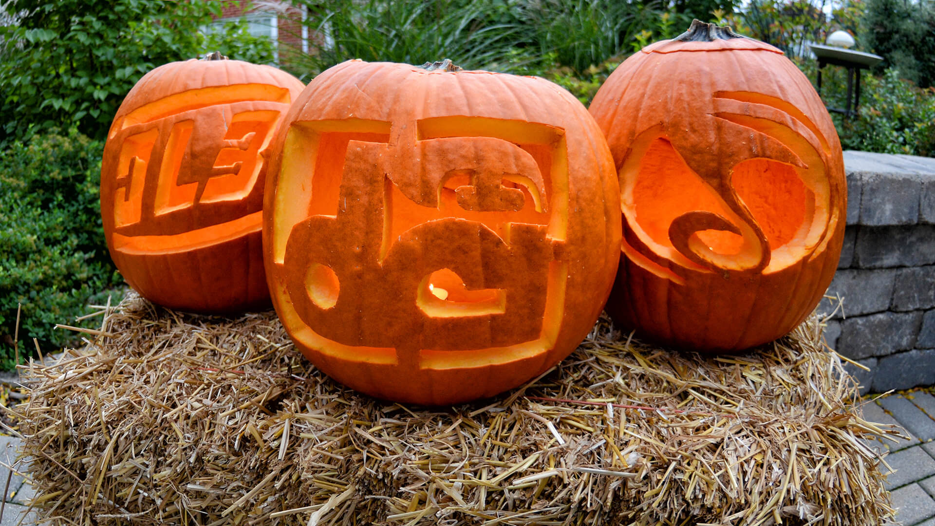 Drum corps pumpkin carving templates
